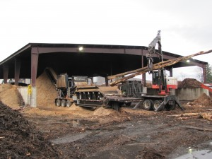 The 3680 Beast at Geneva Wood Fuels has the capability to process material 35 in. in diameter.