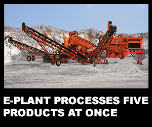 E-plant processes five products at once